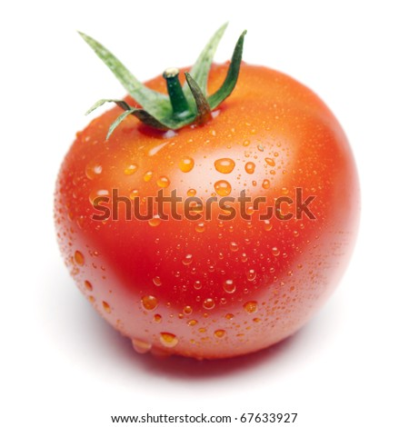 one tomato - stock photo