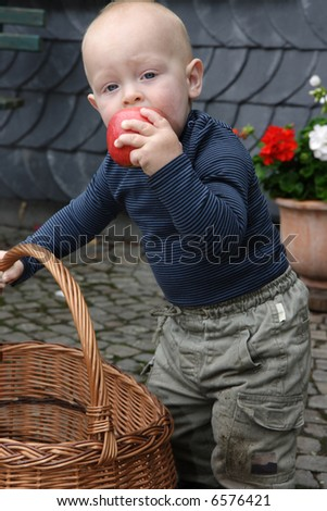 one year little boy and apples - stock photo
