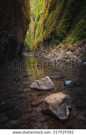 Oneonta Gorge at Sunrise - stock photo