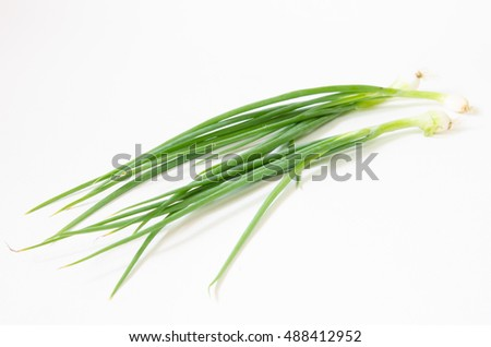 onion chives close up on white background