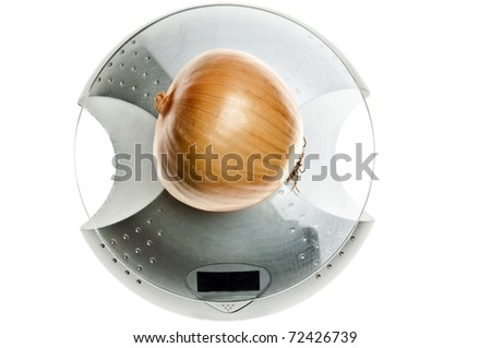 Onion isolated on food scale - stock photo