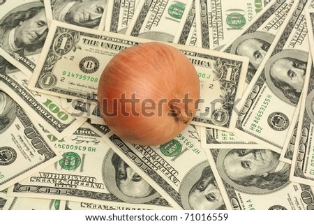 onion on background of the dollars