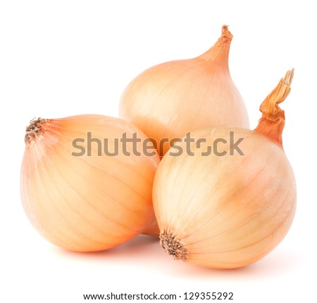 Onion vegetable bulbs on white background cutout - stock photo