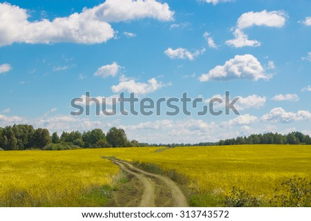 Only open green, yellow field forest and clouds on blue sky in summer, sunny day. Good weather. Away, far hills, trees. Mysterious, magical, fantastic panoramic landscape place. Photography, image - stock photo