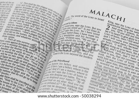 open bible - stock photo