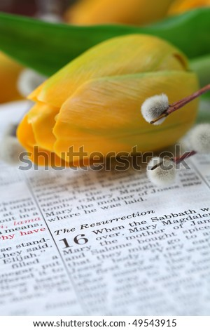 Open Bible with selective focus on the text in Mark 16 about Jesus' resurrection. Shallow DOF
