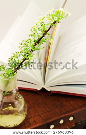 Open book and cut flowers