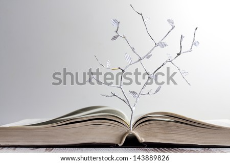 Open book and paper letters tree creative concept - stock photo