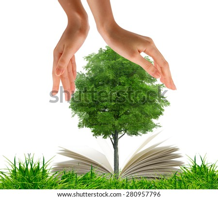 Open book in green grass and tree between the hands. Nature and environment protection concept - stock photo