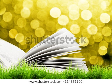 Open book in green grass over yellow sun light. Magic book - stock photo