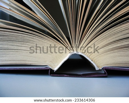 Open book lying on the table - Book pages - Reading - stock photo