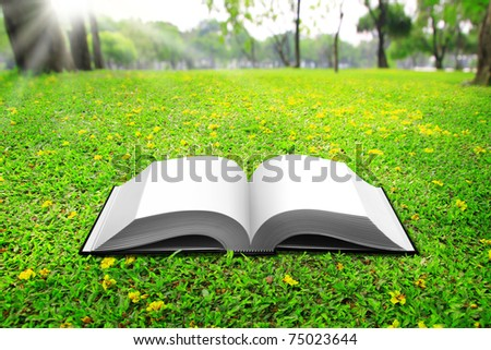 open book on Green Grass background in park beautiful - stock photo