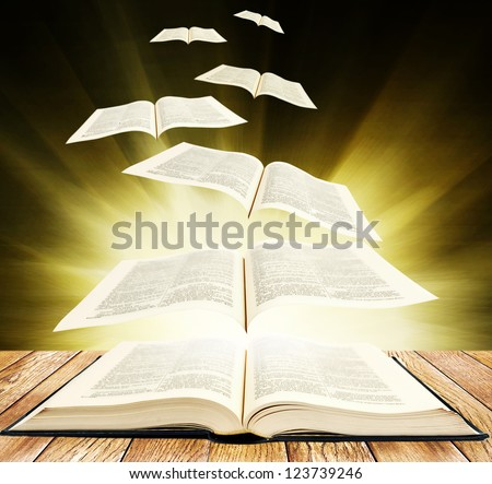 Open book on wooden planks and pages fly up on black background with brigth rays - stock photo