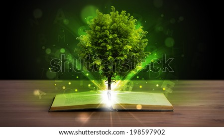 Open book with magical green tree and rays of light on wooden deck - stock photo
