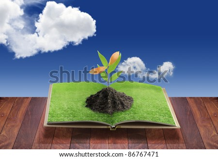 Open 3D book with tree on green grass field and bent, conceptual idea - stock photo