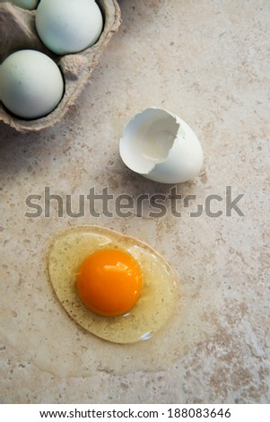 Open Fresh Light Green Egg with Dark Orange Yolk From Free Range Chicken - stock photo