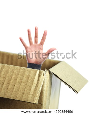 Open hand is out of the box isolated on white background. - stock photo