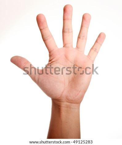 Open hand over white background. Isolated image