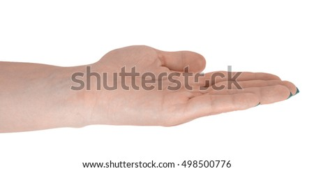 Open hand showing something, adult female's skin, cyan manicure. Isolated on white background.