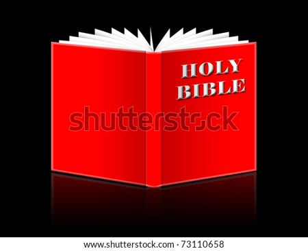 open Holy Bible isolated on black - stock photo