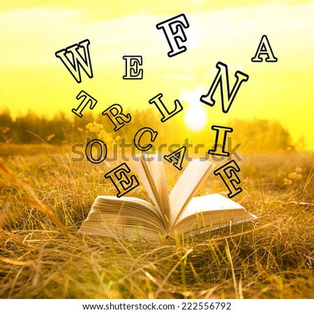 Open Magic big children book with flying black letters in green and yellow grass over sunset cloudy sky with sun light background. Idea of kids learning to read by syllables Space for inscription - stock photo