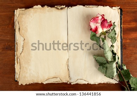 Open old book and rose on wooden background