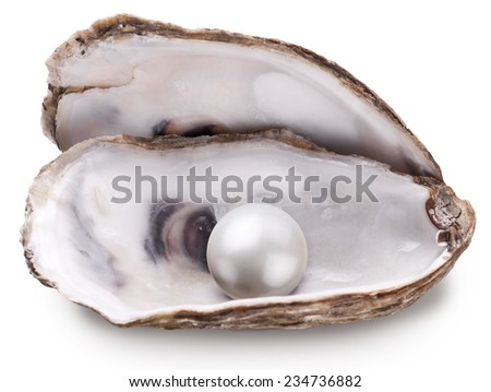 Open oyster with pearl isolated on white background. - stock photo