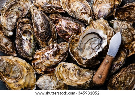 Open Oysters Fines de Claire with lemon and wine - stock photo