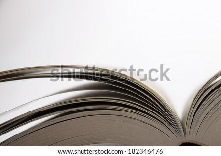 Open pages of book on light background - stock photo