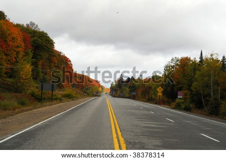 Open Road in Autumn