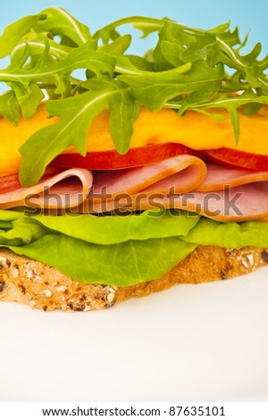 Open sandwich with melted cheese and salad decoration