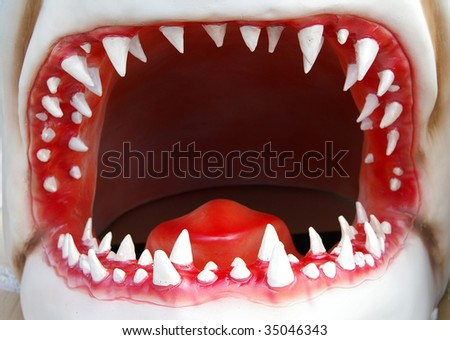 open shark mouth closeup with jagged teeth - stock photo