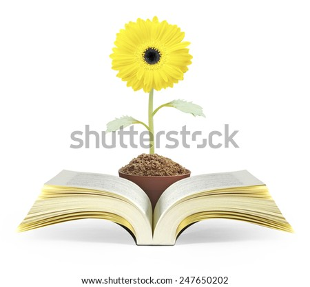Open the book of fantasy stories  - stock photo