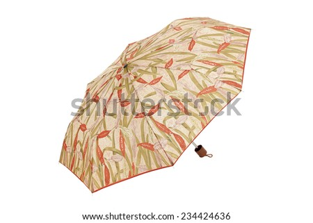 Open umbrella with leaves abstract elements isolated on white with clipping path - stock photo