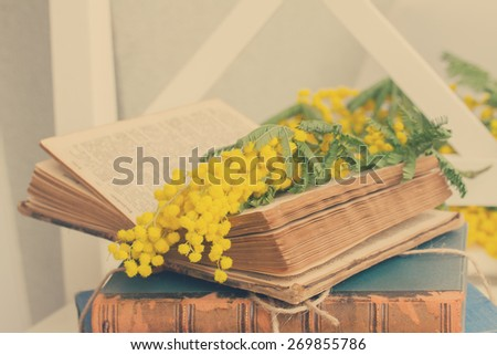 open  vintage old book  with french mimosa flowers, retro toned - stock photo