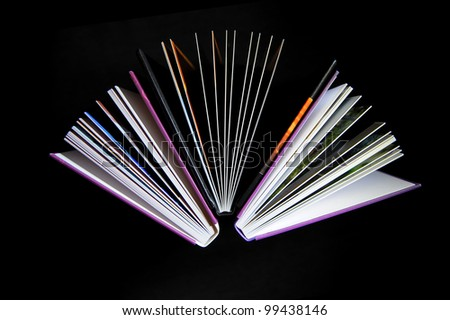 Opened book - stock photo