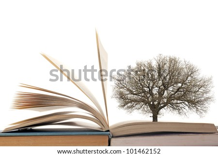 Opened book and tree