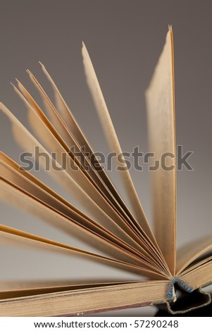 Opened book with fantail sheets - stock photo