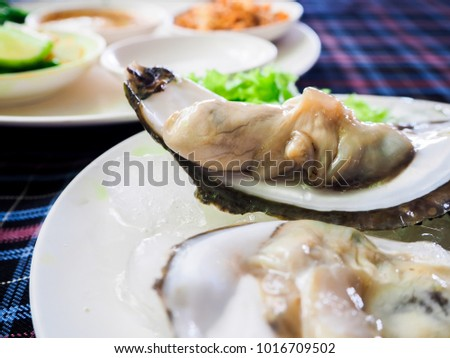Opened fresh oysters in a white plate on ice.