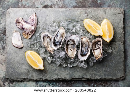 Opened Oysters on stone plate with ice and lemon - stock photo