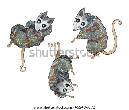 Opossum, mouse, rat, character gray - stock photo