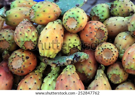 Opuntia ficus-indica fruits ( called also as Indian fig opuntia, barbary fig, prickly pear ) as background - stock photo