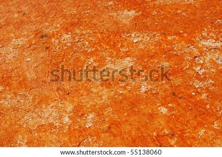 Orange Bacteria Mat - stock photo