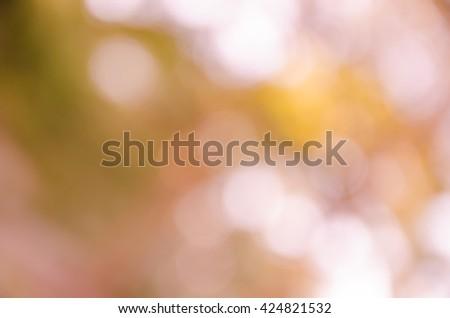 orange bokeh background from nature under tree shade - stock photo