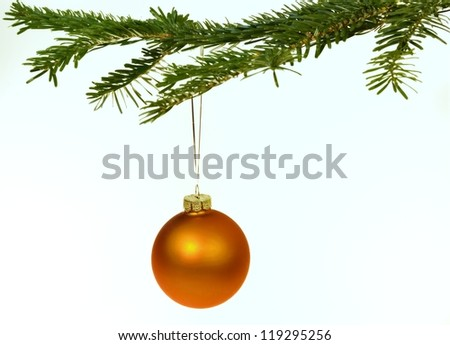 Orange Christmas decorations hanging from a pine branch - isolated on white background