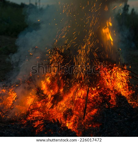 Orange fire flames. Big fire in the village - stock photo