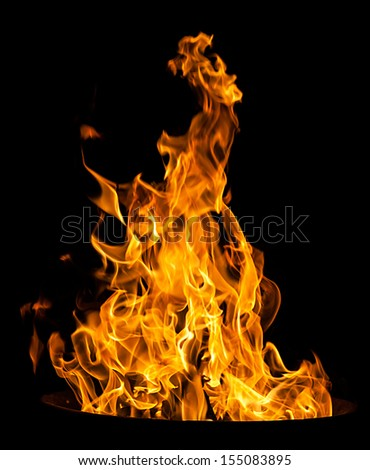 Orange fire flames on a black background
