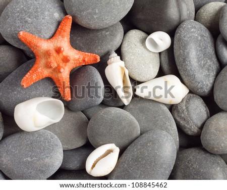 Orange five-pointed starfish on the sea rocks - stock photo