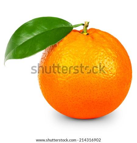 Orange fruit isolated  - stock photo