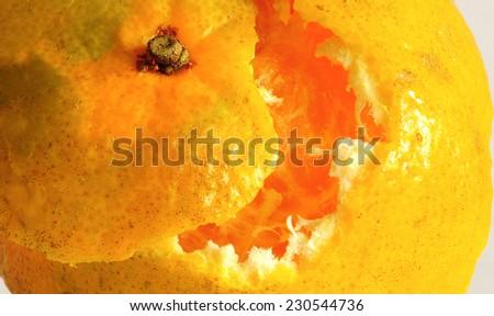 Orange fruit with separated white background  - stock photo